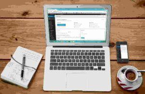 WordPress first entered the market